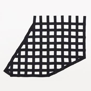 Car Window Net